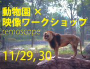 [トピック] remoscope at zoo